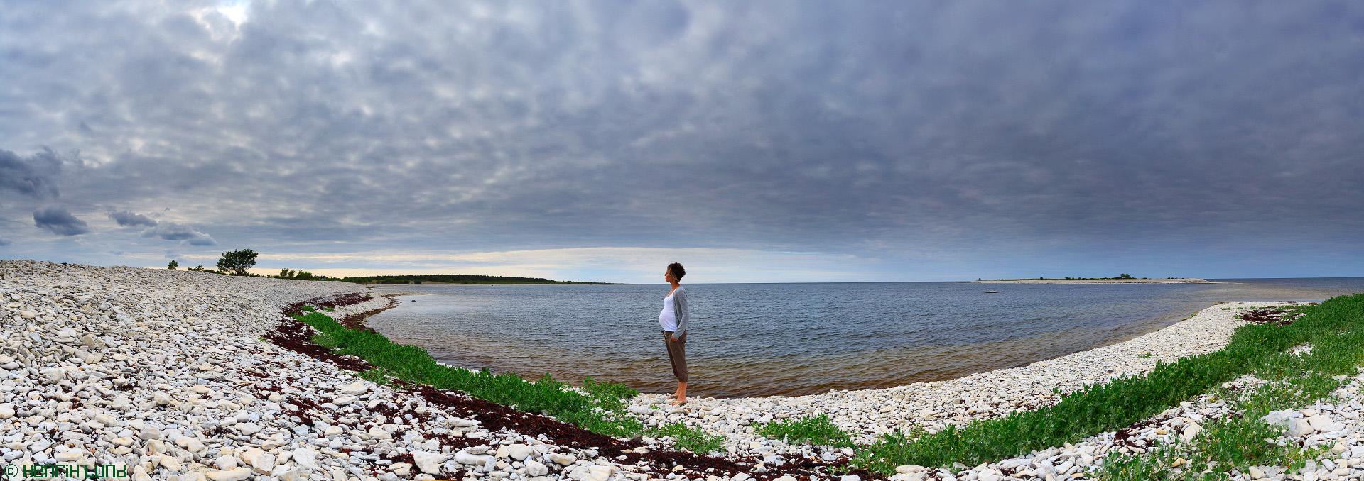 Waiting, Ar, Gotland, Sweden, July 2013.