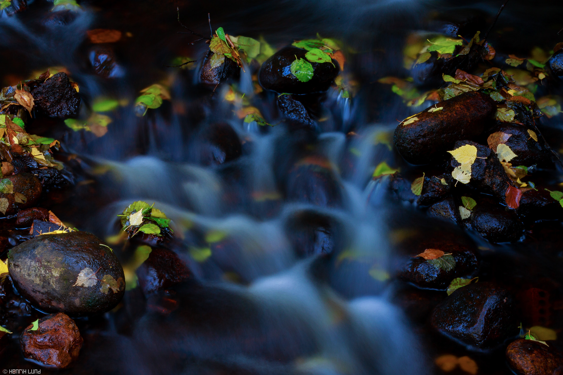 Autumn leaves in the flowing water rapids, Mathildedal, Finland.