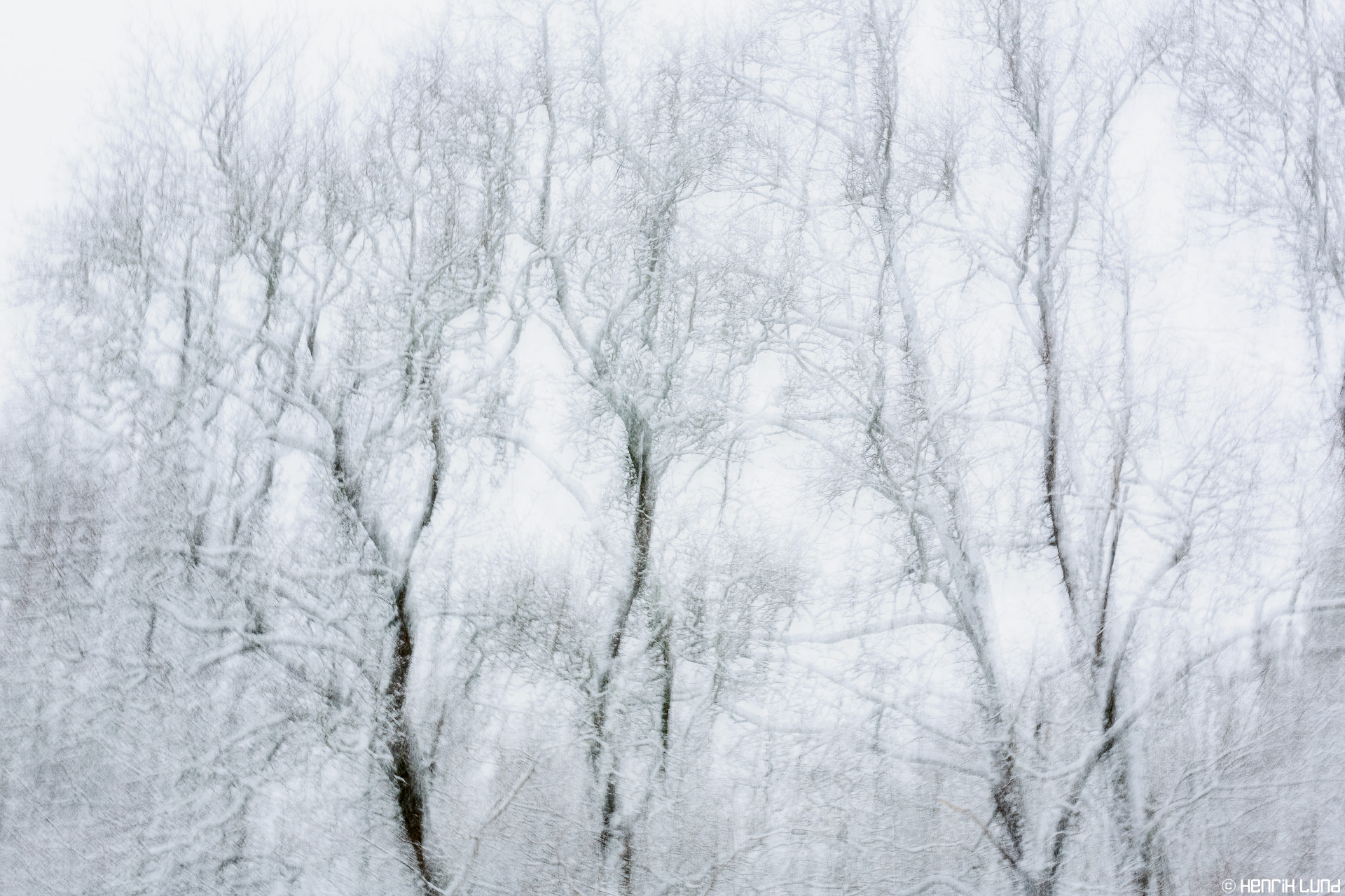 A panning shot of the trees covered with fresh snow. Lappträsk, Finland, March 2014.