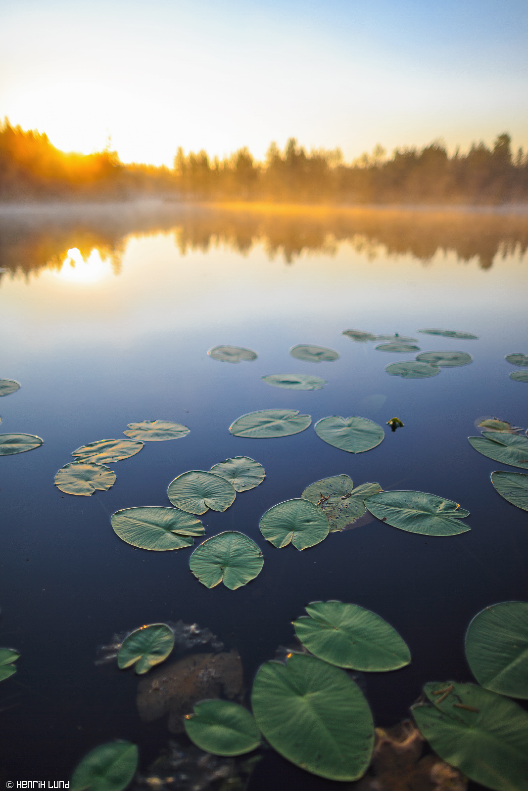 First rays of the morning sun at Mustalampi in Ilomantsi, Northern-Carelia, Finland. August 2014.