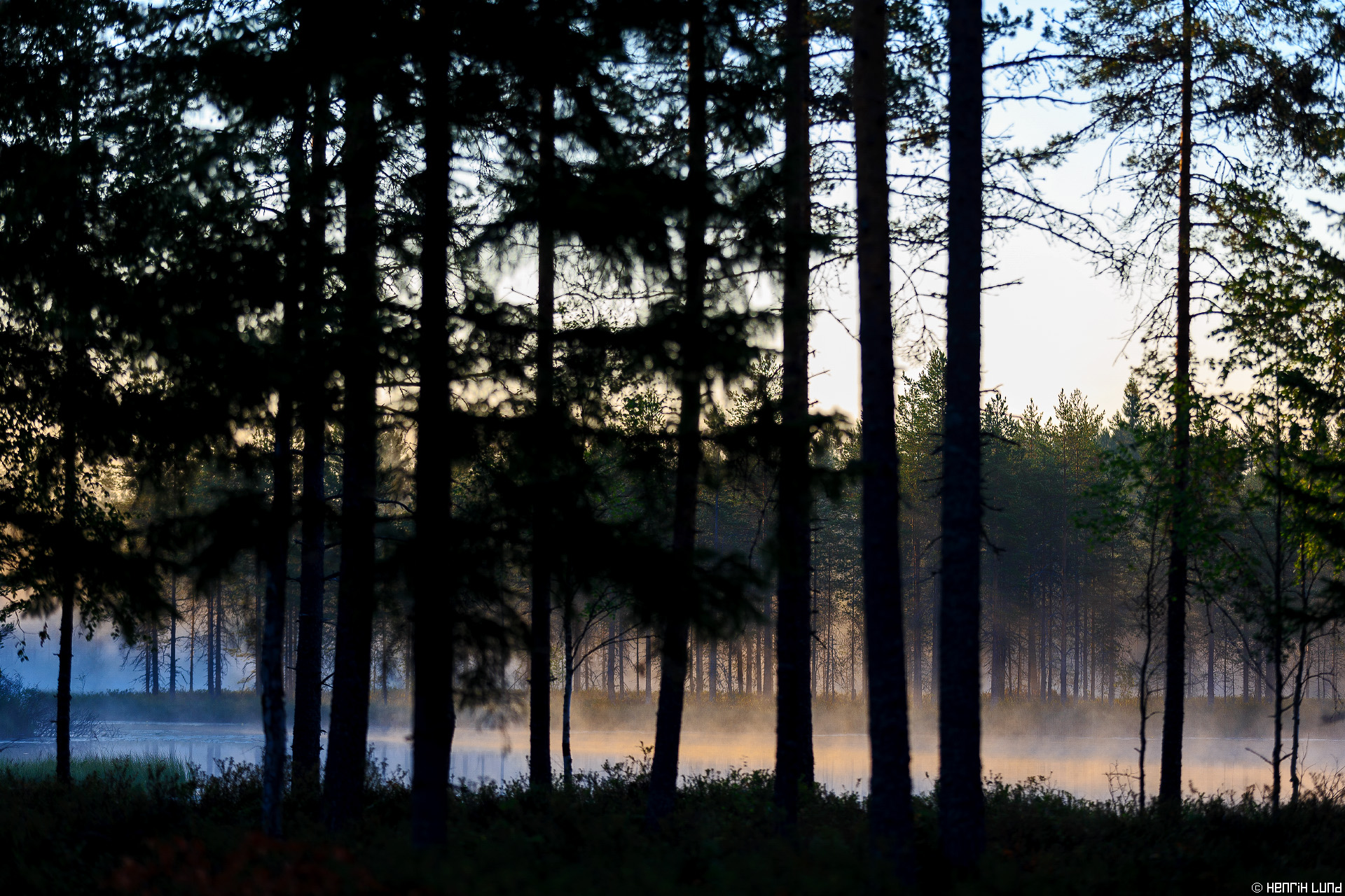 Morning mist over Mustalampi in south-eastern Ilomantsi, Northern-Carelia, Finland. August, 2014.