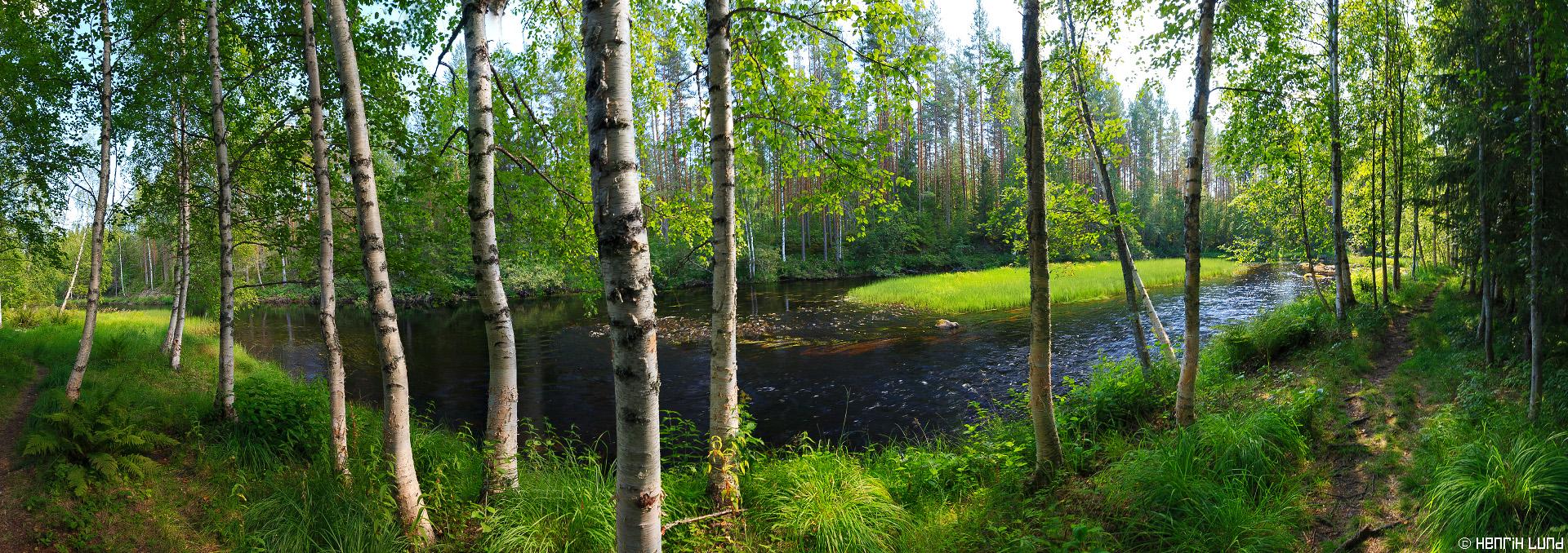 Panorama view over Vekarus river in Northern Carelia, Joensuu, Finland. August 2014.