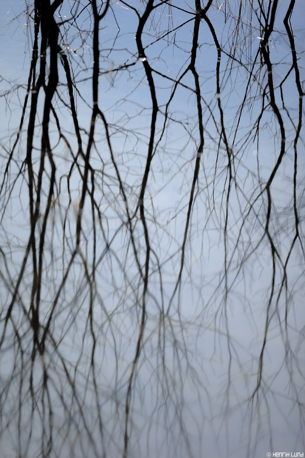 Abstract branches mirroring in the spring flood. Lappträsk, Finland, April 2015.