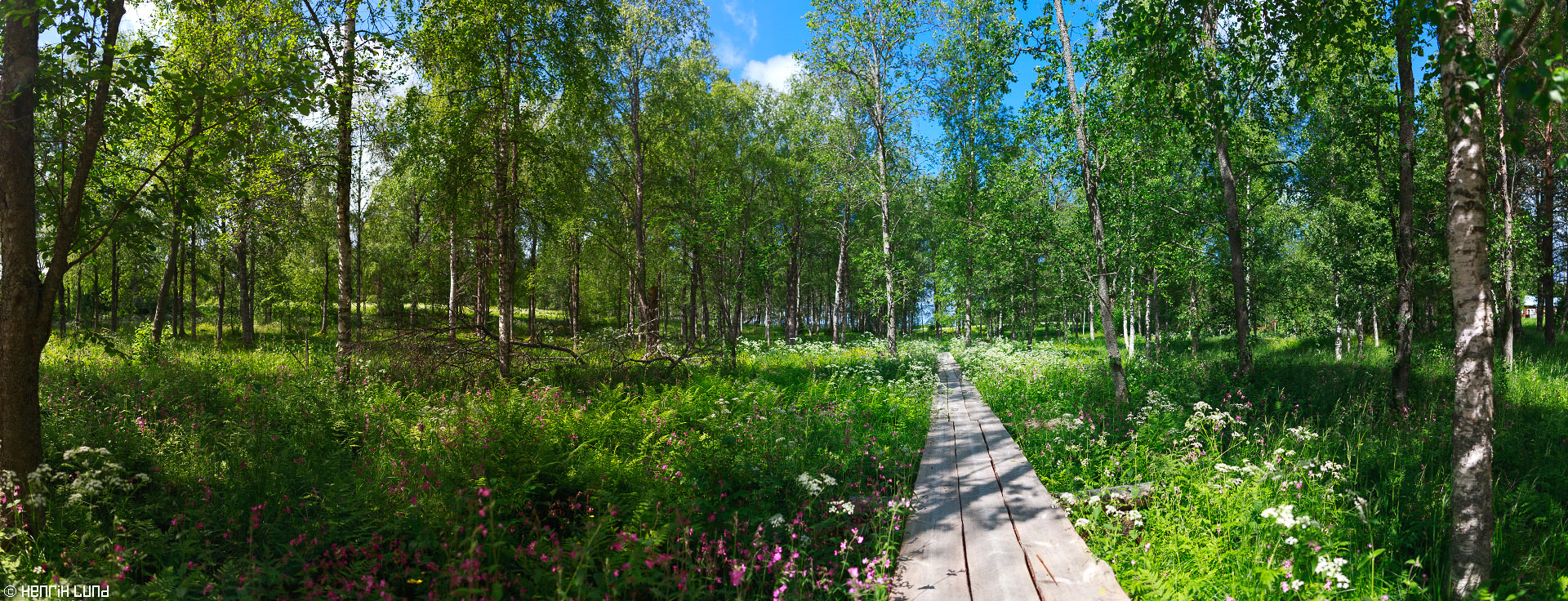 Panoramic view over the paht to the 'Kalmisto' (orthodox burial ground) in Kokonniemi in Ilomantsi. June 2015.