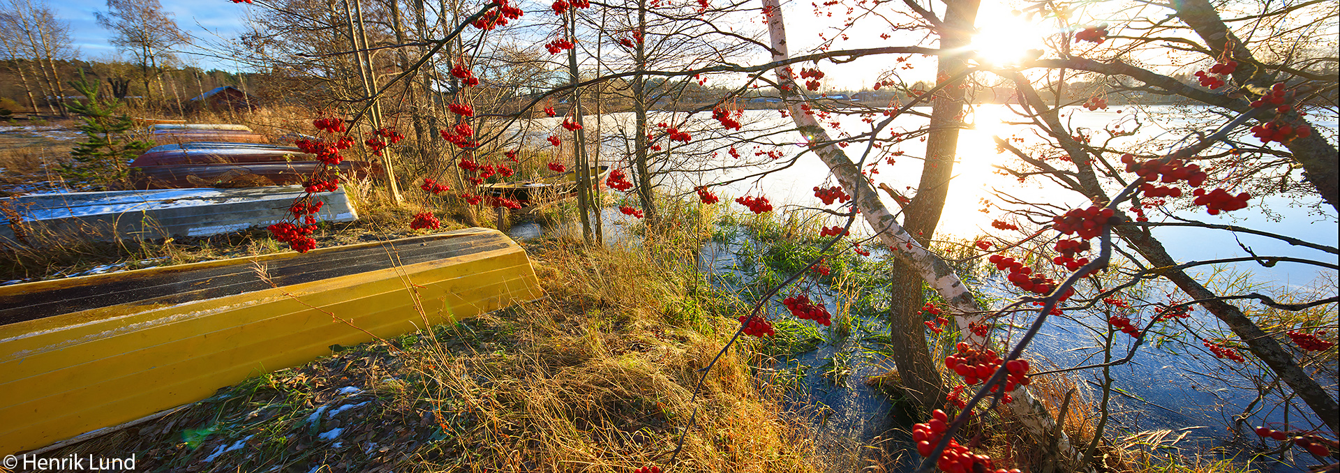 Morning at the boat harbour with colorful rowanberries. Lappträsk, Finland. November 2017.